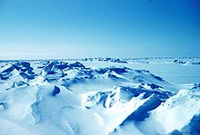 Panoramic view of a field of ridged ice stretching towards the horizon.