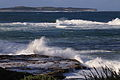 Shark Island at Kurnell Point, Cronulla NSW Australia 01.JPG