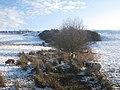 Sheep in Snow - geograph.org.uk - 1626064.jpg