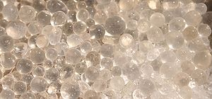Beads of silica gel
