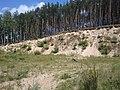 Skarpa - panoramio (1).jpg