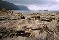 Skjervøy Coast, (summer 2002) - panoramio.jpg