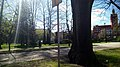Slupsk - Park im. Waldorffa - ulica Jagiełły - panoramio.jpg