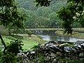 Small Pond near Derwas - geograph.org.uk - 1412876.jpg