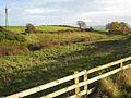 Small stream valley near Elwick - geograph.org.uk - 279057.jpg
