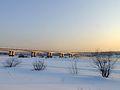 Snow, Bridge, Sunset.jpg