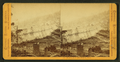 Snow sheds from Cisco, from the west, by Muybridge, Eadweard, 1830-1904.png
