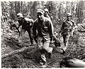 Soldiers of the 145th Infantry carry a wounded comrade off of Hill 700, Bougainville Island, March 1944..jpg