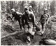 Soldiers of the 145th Infantry carry a wounded comrade off of Hill 700, Bougainville Island, March 1944.