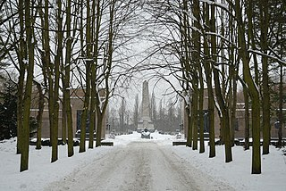 Soviet War Memorial (Schönholzer Heide) cemetery