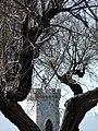 Spiando Piazza Bovio.jpg