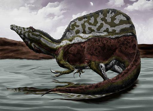 Spinosaurus durbed