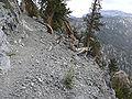 Spring Mountains North Loop trail 3.jpg