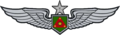 Sr Army Aviation Service Badge.png
