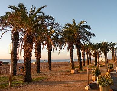 St.Felio de Goixols Beach.