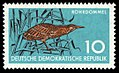 Stamps of Germany (DDR) 1959, MiNr 0689.jpg