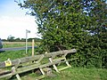 Stile South Of Fulstow - geograph.org.uk - 541649.jpg