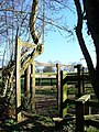 Stile and Sheep Pen - geograph.org.uk - 368893.jpg