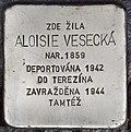 Stolperstein für Aloisie Vesecka.jpg