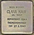Stolperstein für Clara Kauf (Potsdam).jpg