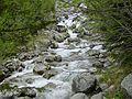 Stream-1346447.jpg