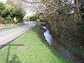 Stream Alongside Road, Wacton - geograph.org.uk - 349881.jpg