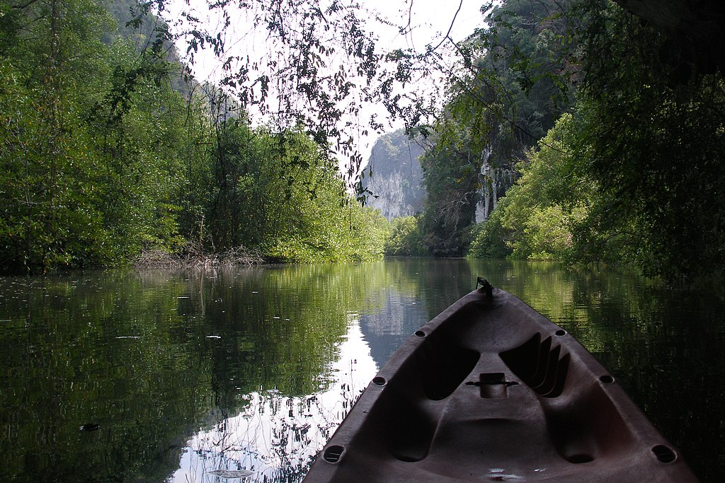 Streams, rivers and mangrove forests of Than Bok Khorani, Thailand