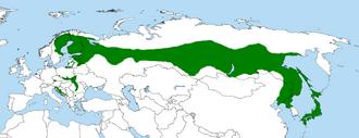 Ural owl - Strix uralensis -Range Map