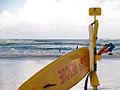 Surf Rescue (2431238644).jpg