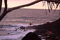 Surfer on the rocks at sunrise.jpg