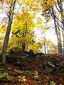 Surroundings of Blazov - panoramio - Dusan Bajus.jpg