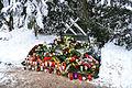 Szczecin Cmentarz Centralny pomnik ofiar katastrofy promu Jana Heweliusz.jpg