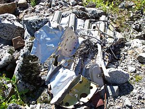 Trans-Canada Air Lines Flight 810 - Debris from the crash, found on Slesse Mountain