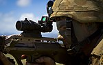 Tactical Live Fire Demonstration during RIMPAC 2014 140729-M-QH615-054.jpg