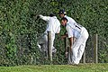 Takeley CC v. South Loughton CC at Takeley, Essex, England 084.jpg