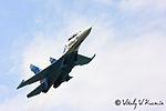 Tambov Airshow 2008 (65-13).jpg