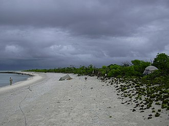 Bokak Atoll - Lagoon shoreline at Sibylla Island, with coral rubble beach and edge of Naupaka shrubland.