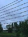 Tartu (35253869825).jpg