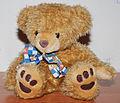 Teddy Bear front flash.jpg