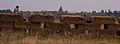 Tempelhofer Haystacks (15188114154).jpg