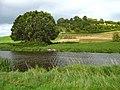 The King's Sedgemoor Drain - geograph.org.uk - 1456943.jpg