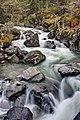 The Pyrenees National Park (6337060239).jpg