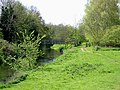 The River Stour and footbridge - geograph.org.uk - 782986.jpg