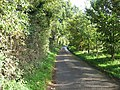 The Road To Southburgh - geograph.org.uk - 295659.jpg