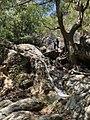 The Secret Beauty of Nature in Srilanka EF9DECF2-F797-460F-ADBC-8742722D6D29.jpg