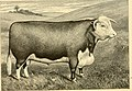 The breeds of live stock, and the principles of heredity (1887) (14778132531).jpg