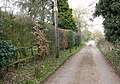 The lane to Woods End Tavern - geograph.org.uk - 1759841.jpg
