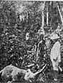 Theodore Roosevelt in Africa 002.jpg