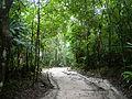Tikal, Guatemala Laslovarga02.JPG