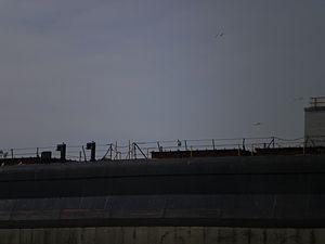 Tim S. Dool moored at the Redpath Sugar Refinery -e.jpg
